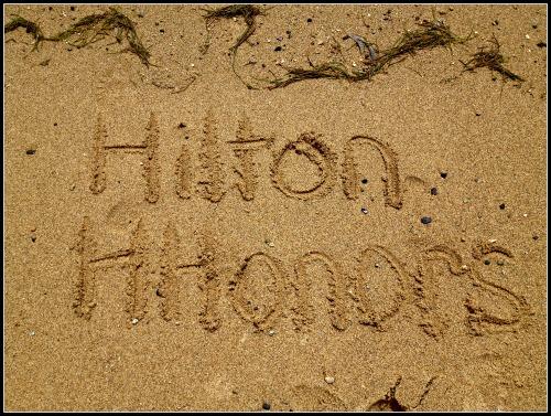 Hilton HHonors Beach