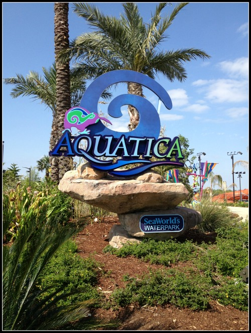 SeaWorld Aquatica Entrance