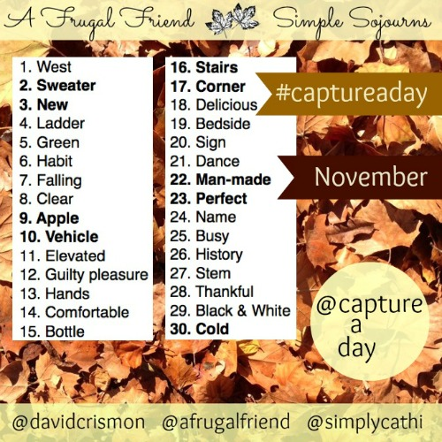 Instagram November Photo Challenge