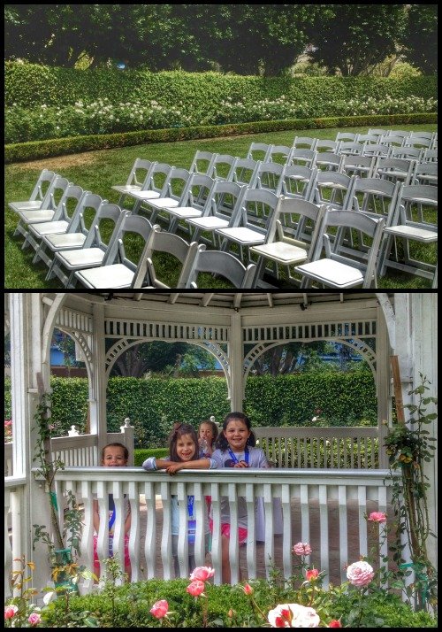 Disneyland Hotel Weddings