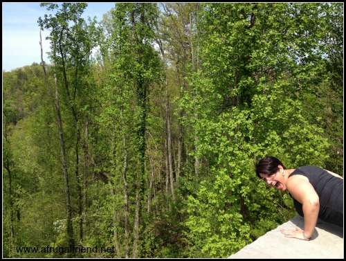 Westgate Smoky Mountain Resort Bears
