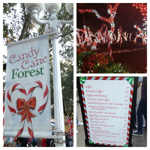 SeaWorld San Antonio Candy Cane FOrest