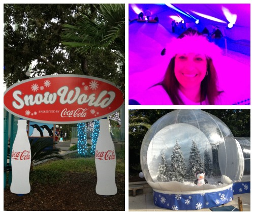SeaWorld San Antonio Snow World