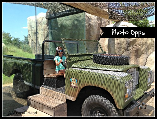 Dallas Zoo Photo Opps