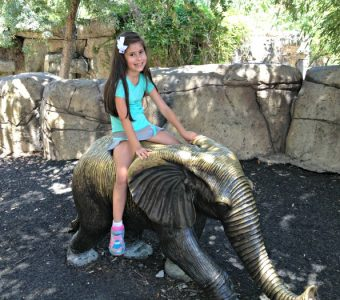 Dallas Zoo with Kids