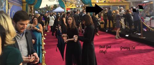 Cinderella Red Carpet Celebrity Arrivals