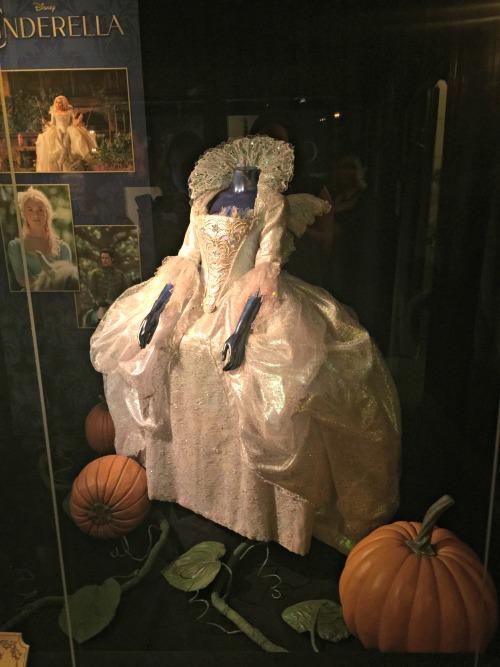 Fairy Godmothers costume