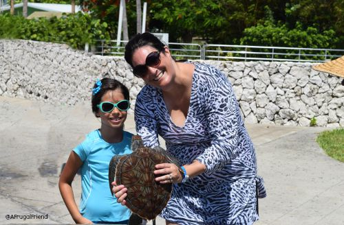 Our Cayman Turtle Farm Cruise Excursion - Grand Cayman - Finding Debra