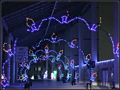 Texas Motor Speedway Gift of Lights Photo
