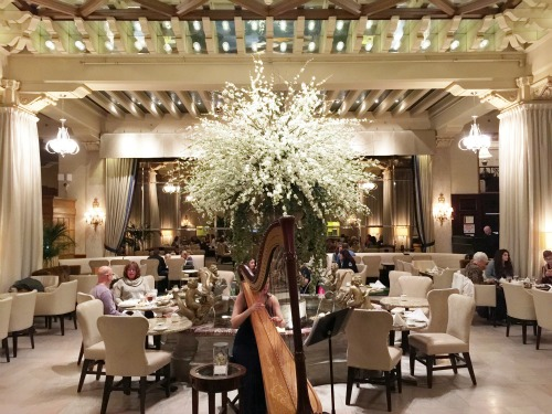 Chicago's Drake Hotel Afternoon Tea