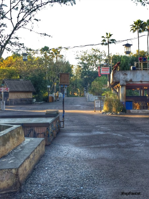 Animal Kingdom Park Before Park Opens 2