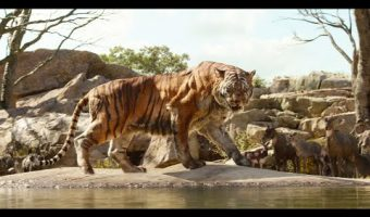 The Jungle Book Live Action Film – First Look and Fun Printable!
