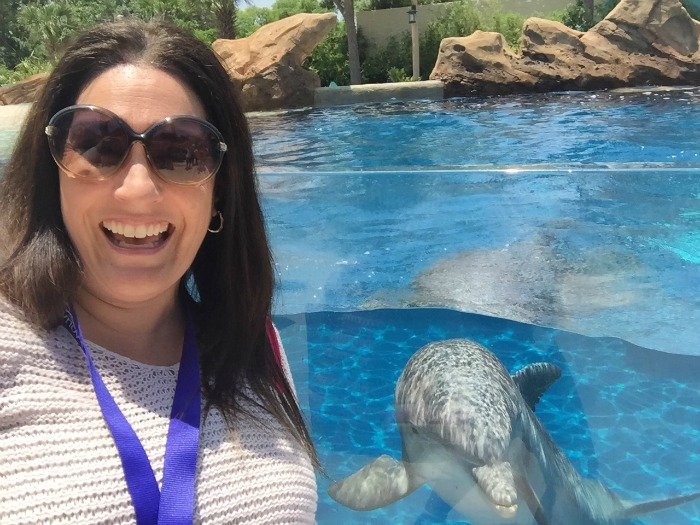 SeaWorld Discovery Point Dolphin Selfie
