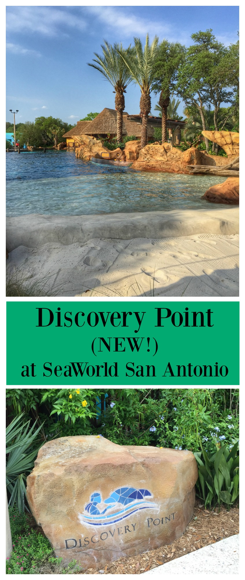 SeaWorld Discovery Point San Antonio