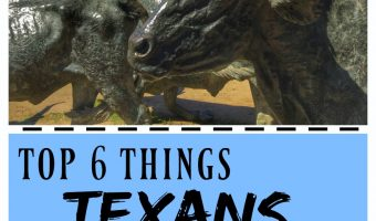 Top 6 Things Texans Love…