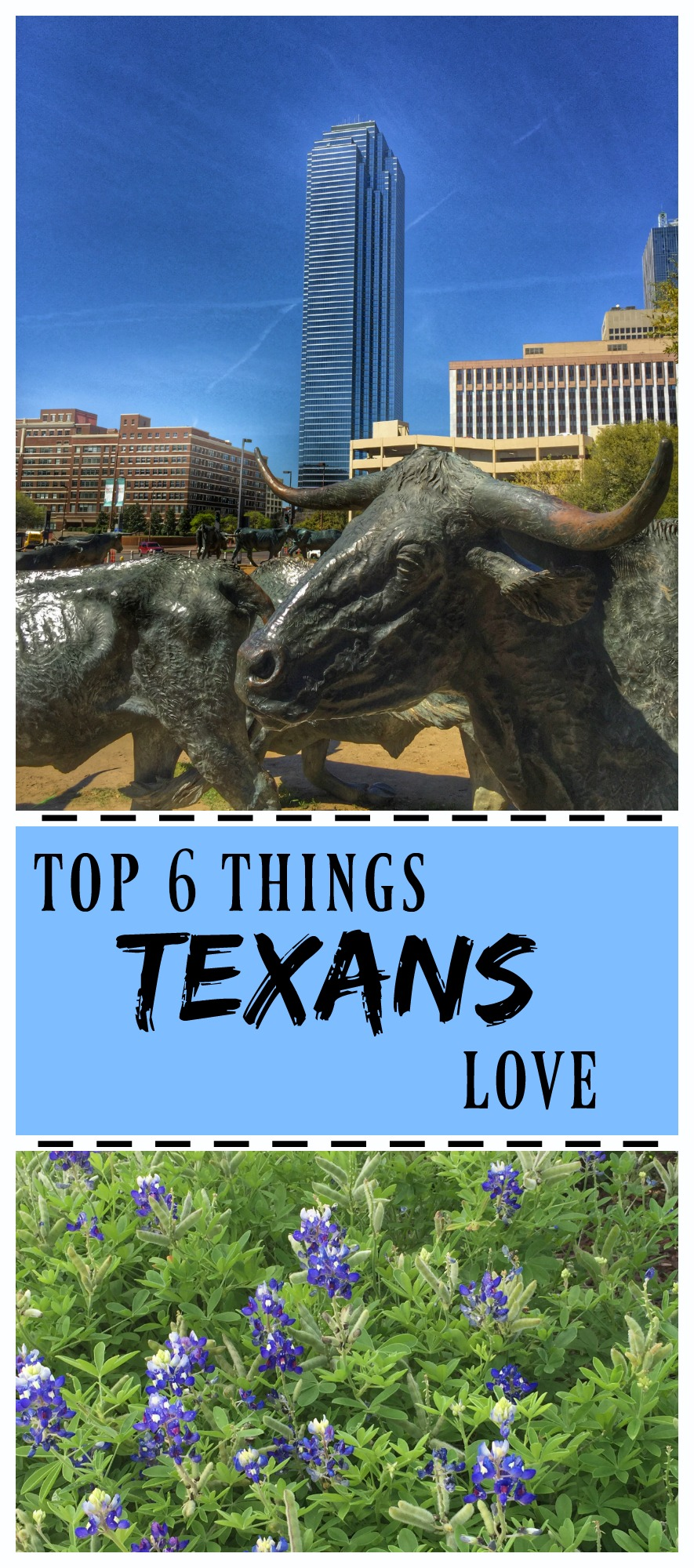 Top 6 Things Texans Love