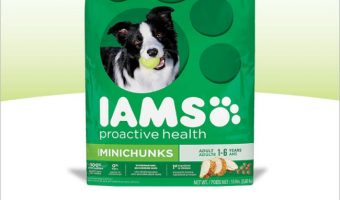IAMS dog food deal