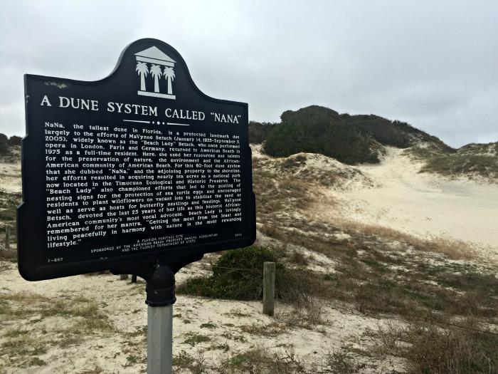 Tallest Dune in Florida