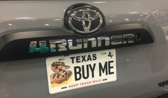 Texas License Plates Fun