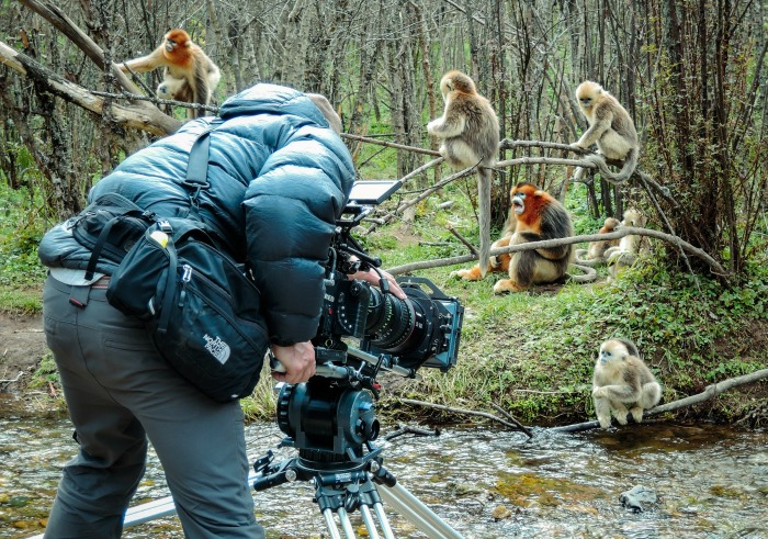 Disneynature Born in China outtakes
