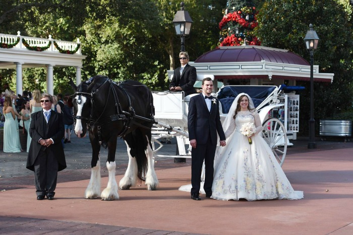 Disney's Fairy Tale Weddings Epcot