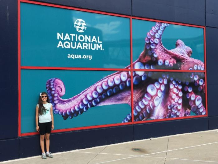 National Aquarium visit