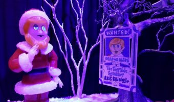 Gaylord Texan ICE – 50% off Discount