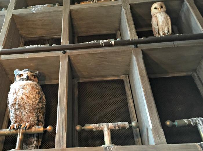 Owl Post Owls