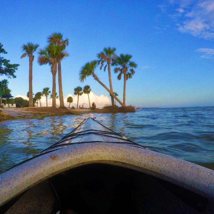 EcoResponsibility travel Panama City Beach