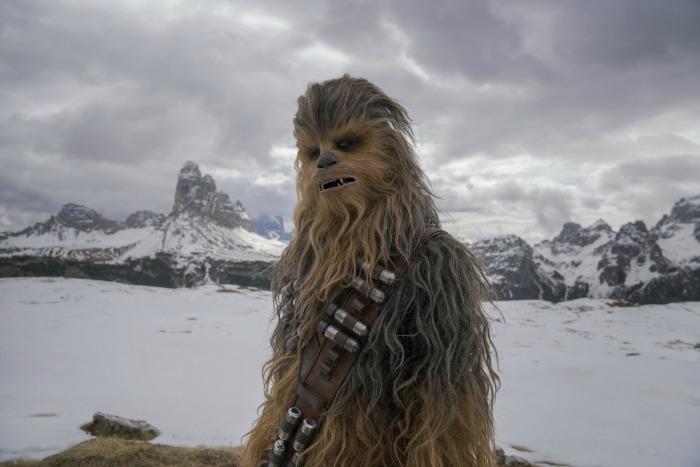 SOLO Chewbacca