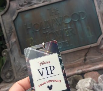 Disney VIP Tour Ultimate Day of Thrills