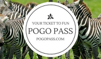 Pogo Pass Deals – Why Locals and Travelers with Kids Need This!