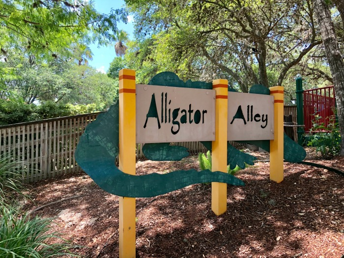SeaWorld San Antonio Alligator Alley