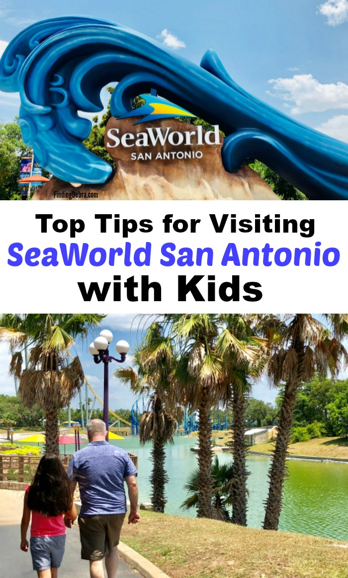 Tips for Visiting SeaWorld San Antonio with Kids