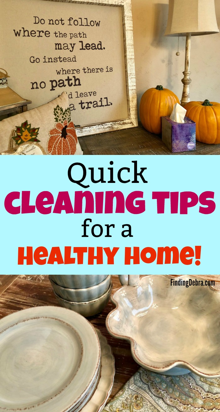 Quick Cleaning Tips for a Healthy Home