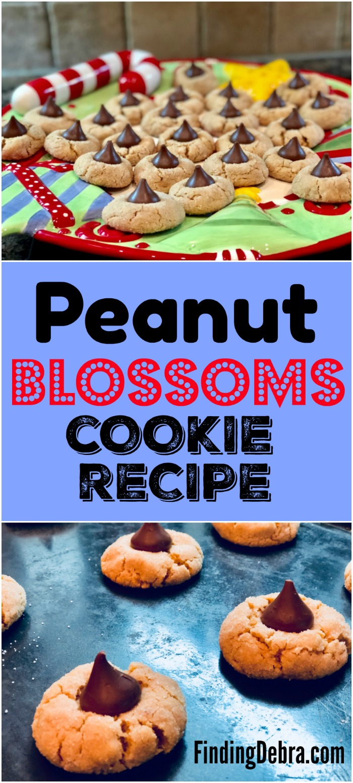 Peanut Blossoms Cookie Recipe