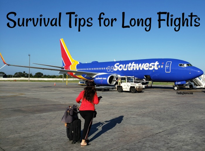 Survival Tips for Long Flights blog post