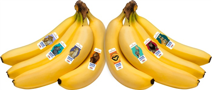DOLE® Bananas The Lion King